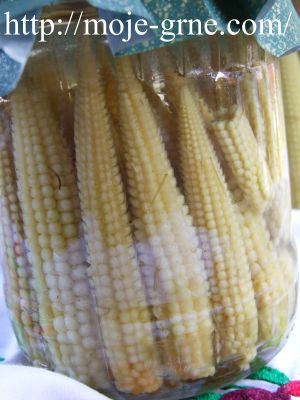 mini kukuruz u slanom rastvoru