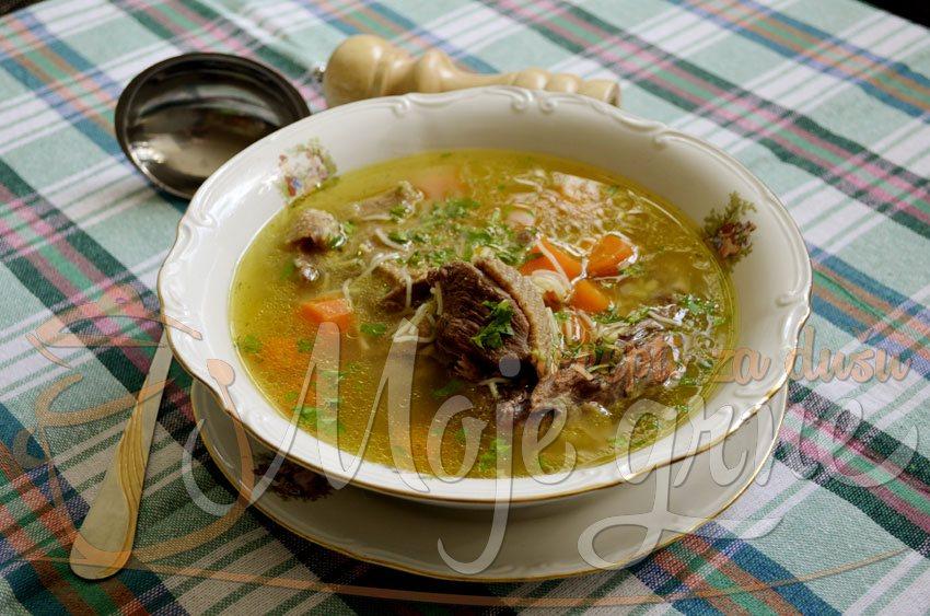 Domaća supa od guske